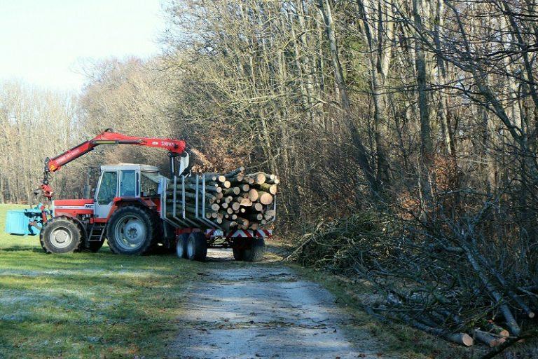 Greifer für Holz für flexibles Arbeiten