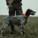Jagdbekleidung - Grundlagen für neue Jäger